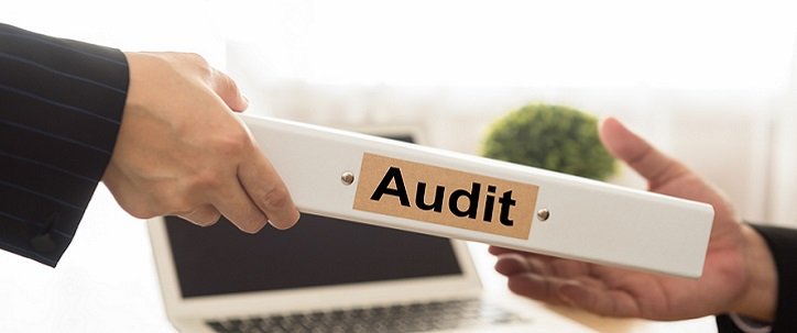 HIPAA Audit Program