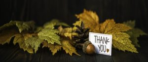 Thanksgiving Message from the CEO of MRO